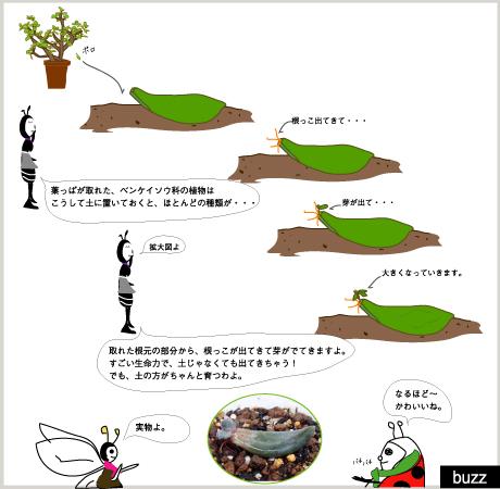 14話3.jpg