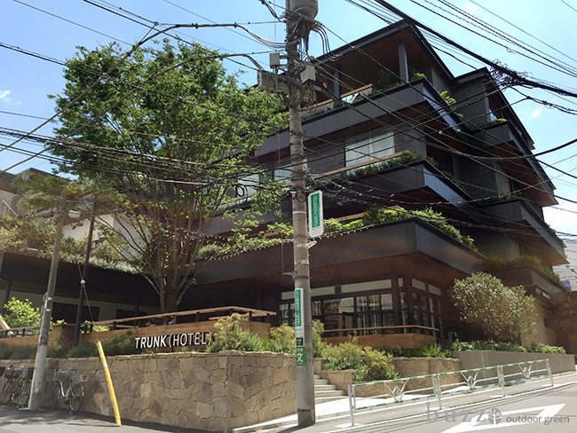 TRUNK (HOTEL)1.jpg